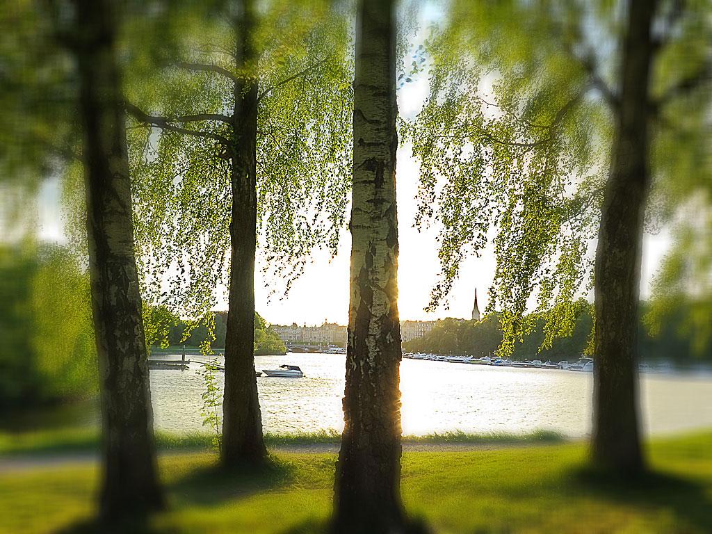 Sommardag på Djurgården