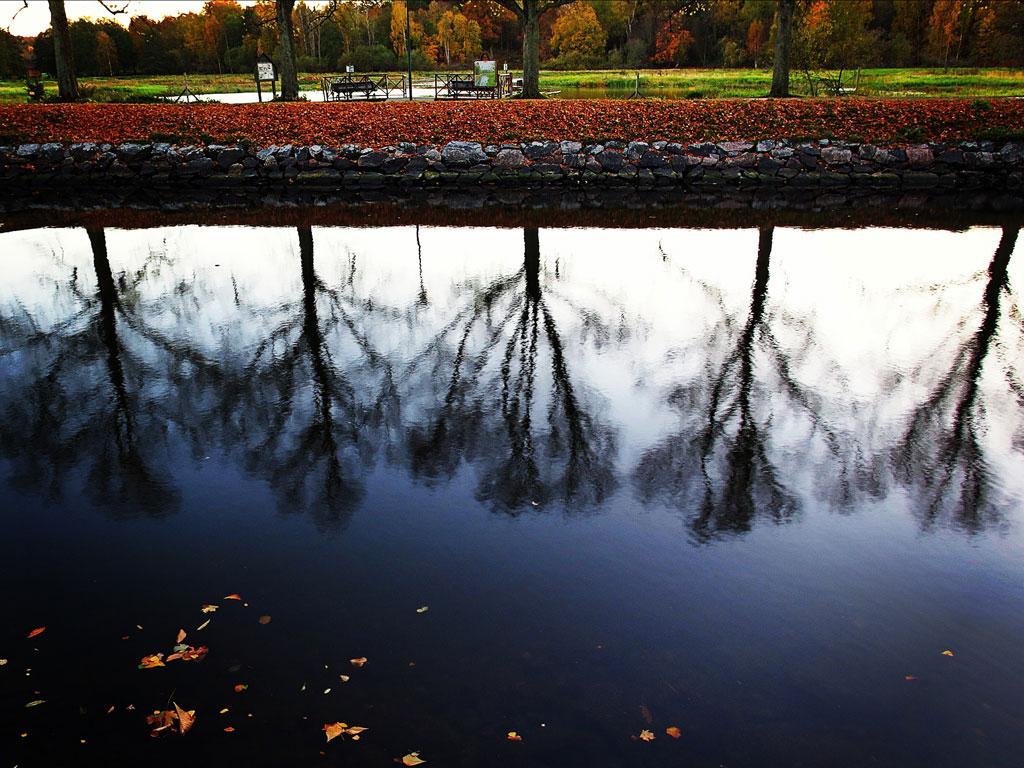 Höst vid Djurgårdsbrunnskanalen